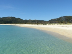 Perfect beach in Abel Tasman National Park