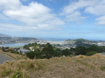 View out of the harbor toward Cook Strait